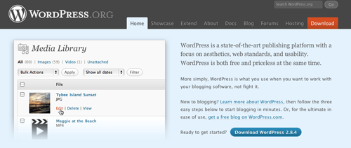 wordpress2.8.4