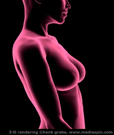 3-D Breast Exam rendering #1, pink x-ray look